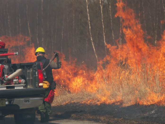 The application of prescribed fire is one of the most effective yet challenging habitat management tools. It requires a specialized skill set, is weather and site condition dependent, and is expensive to implement. In the past decade, prescribed fire has been used primarily to treat - 100 acres of fire dependent bine barrens habitat.